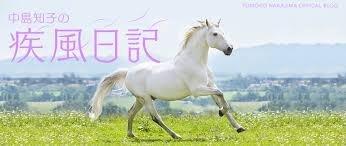疾風日記.jpg